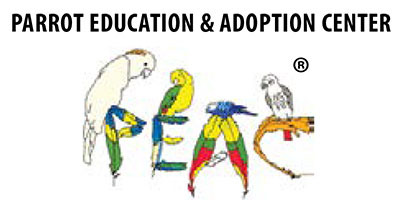 Parrot Education and Adoption Center.jpgP
